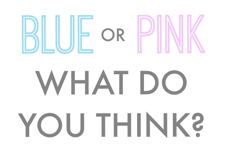 Blue or Pink What do you Think? Free gender reveal printables.