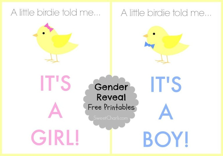Gender reveal free printables. It's a girl or it's a boy, Blue or Pink What do You Think?