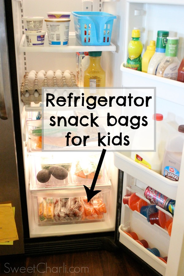 healthy refrigerator snack bags for kids