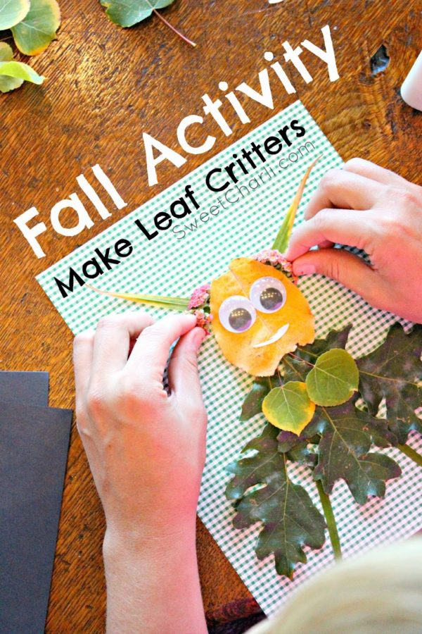 Little Leaf Critters – A Fall Activity for Kids
